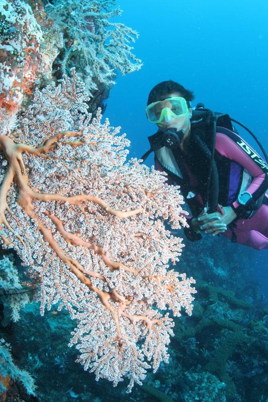 Reisebericht_Bali_11.JPG